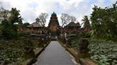 Bali: Lotus tempel (Ubud)